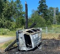 smashed car against power pole